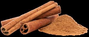 Cinnamon horse