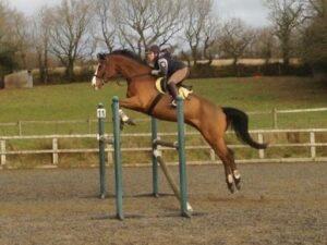 Sam jumping Ollie