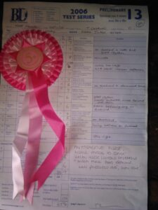 Corky's dressage test sheet