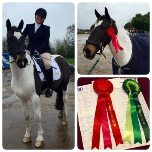 Mikey at Wing Jumping and Dressage Centre