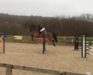 Ollie jumping in beacons