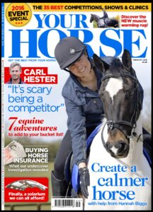 Your Horse Cover