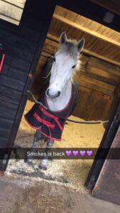 smokey1