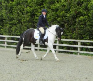 Dressage at Wing