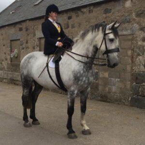 Skip and Grace Side Saddle