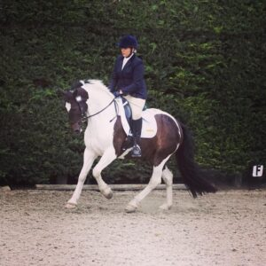 Dressage at Wing (Spot the Pokemon!)