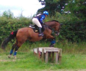 Ashwood Equestrian Cross Country