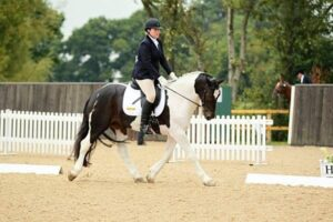 dressage-at-hickstead