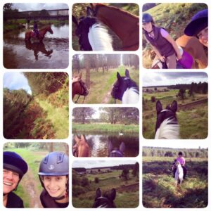 thetford-forest-holiday-adventure