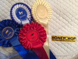our-weekend-of-dressage-with-cracking-results