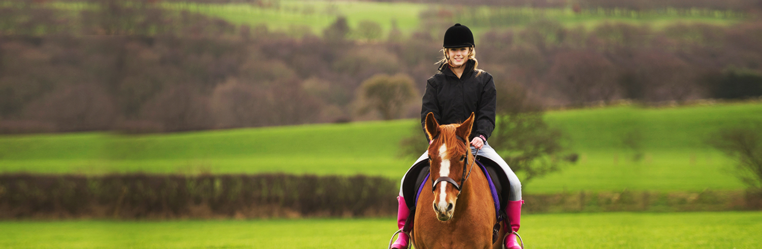 Horse riding banner 2