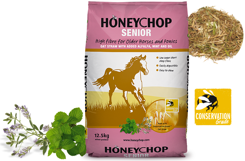 Honeychop Senior